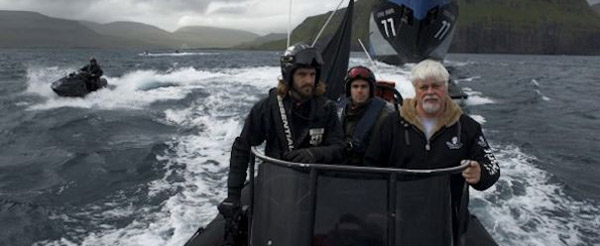 whale_wars_banner